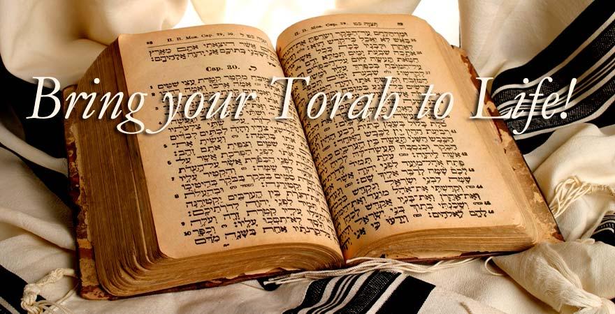 Singing TorahTM Assistive Technology - Singing Torah (TM ...